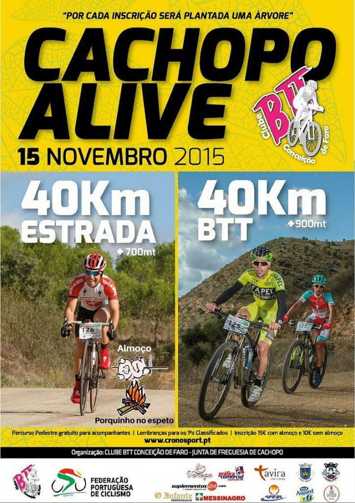cartaz web cachopoalive2015